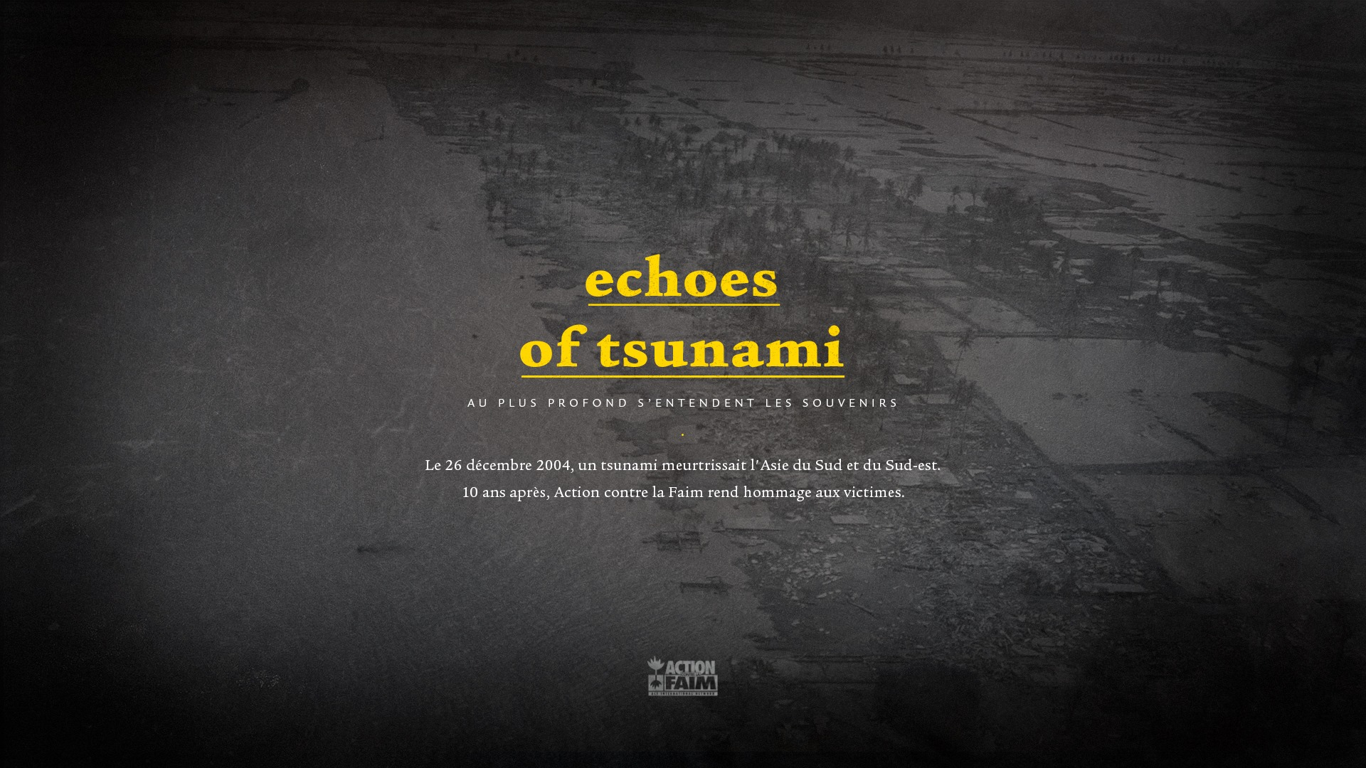 Echoes Of Tsunami